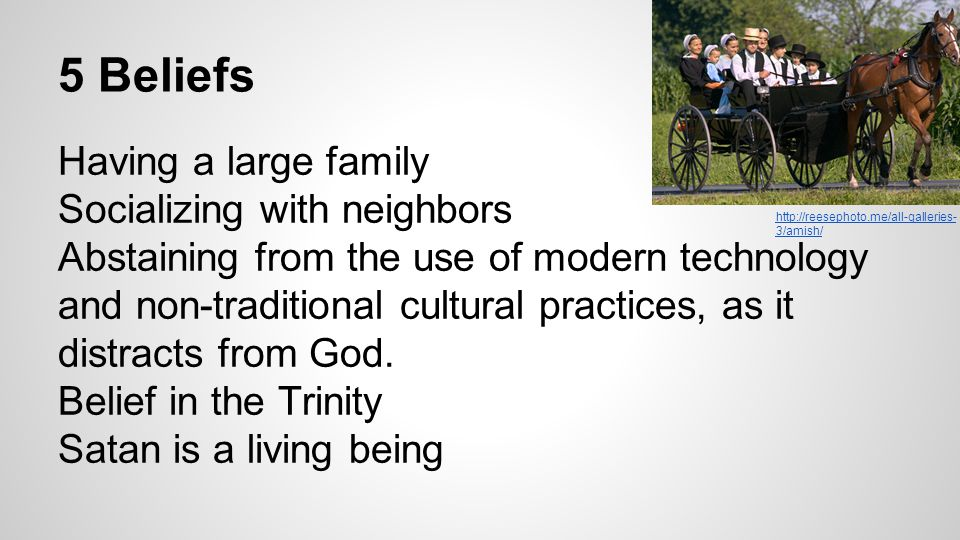 5 Beliefs Having a large family Socializing with neighbors Abstaining from the use of modern technology and non-traditional cultural practices, as it