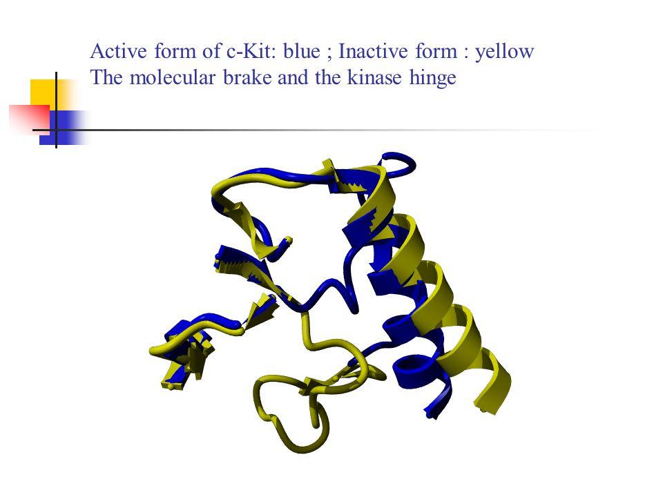Inhibition of c-Kit through the binding of ellipticines