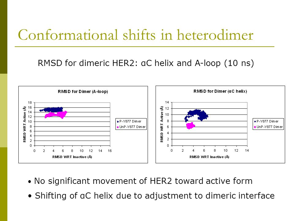 Conformational shifts in heterodimer RMSD for dimeric HER2: αC helix and A-loop (10 ns) No significant movement of HER2 toward active form Shifting of αC helix due to adjustment to dimeric interface