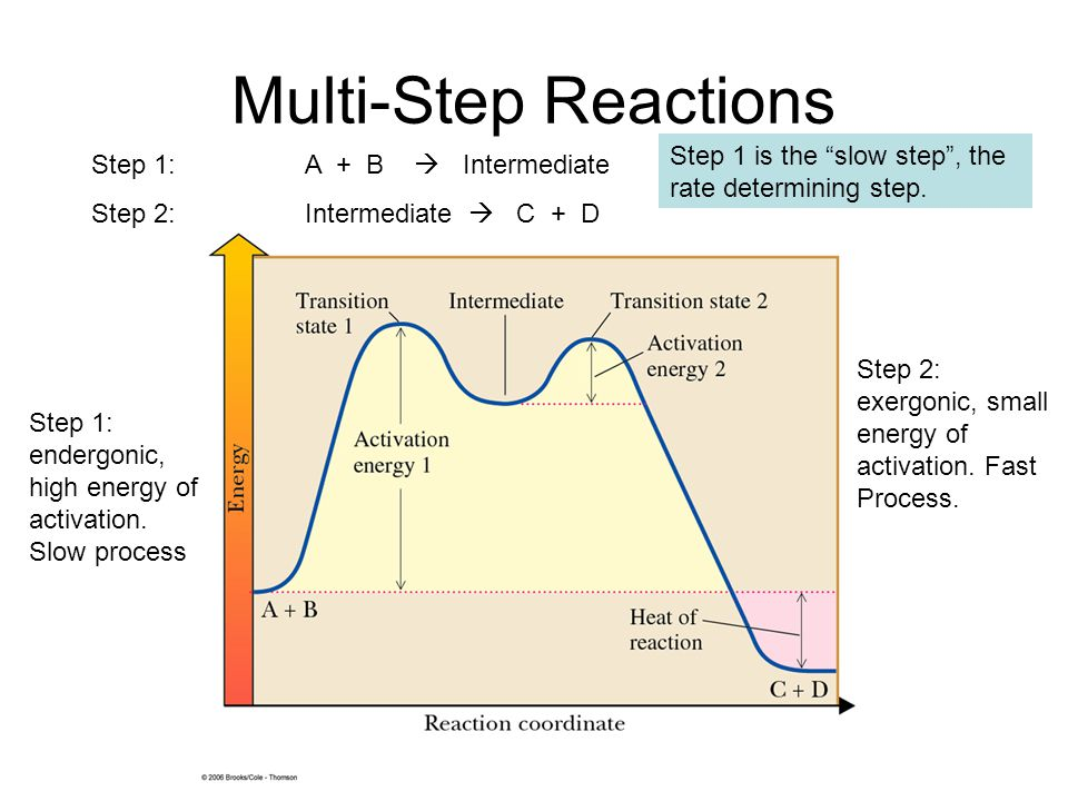 Multi-Step Reactions Step 1: A + B  Intermediate Step 2: Intermediate  C + D Step 1: endergonic, high energy of activation. Slow process Step 2: exe