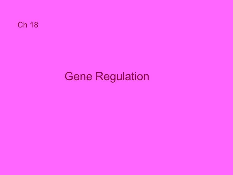 Ch 18 Gene Regulation