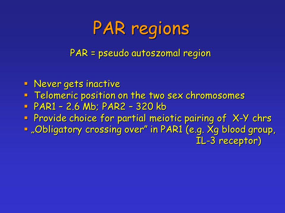 """PAR regions PAR = pseudo autoszomal region  Never gets inactive  Telomeric position on the two sex chromosomes  PAR1 – 2.6 Mb; PAR2 – 320 kb  Provide choice for partial meiotic pairing of X-Y chrs  """"Obligatory crossing over in PAR1 (e.g."""