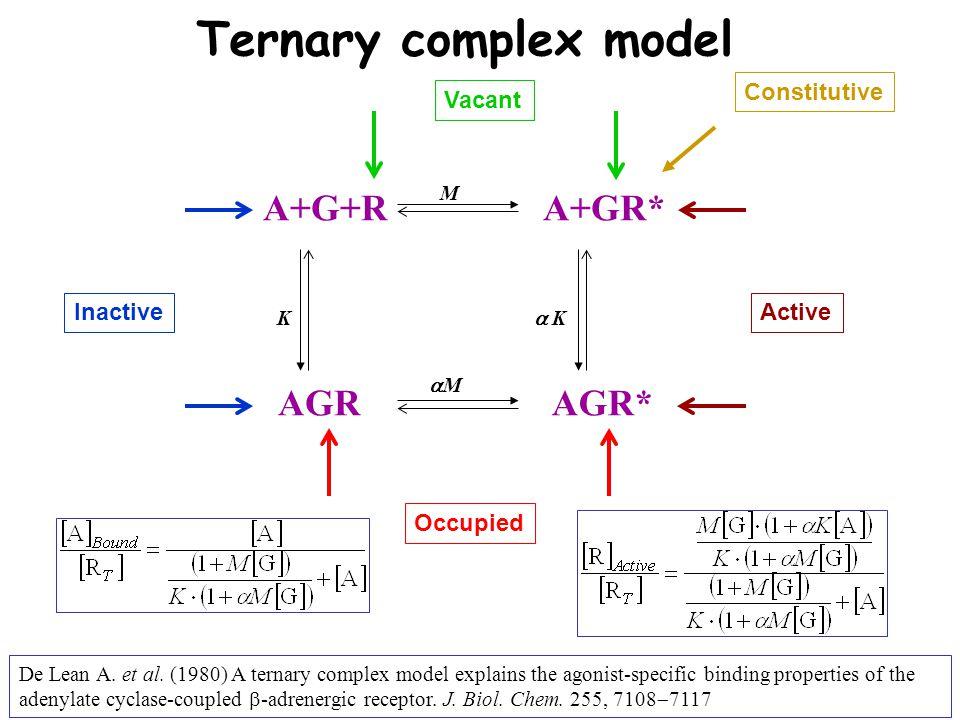 A+G+R AGR A+GR* AGR* Ternary complex model InactiveActive Vacant Occupied Constitutive KK MM MM   K De Lean A.