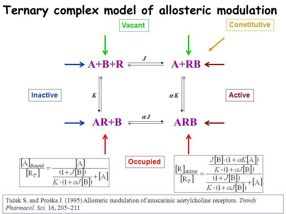 A+B+R AR+B A+RB ARB Ternary complex model of allosteric modulation InactiveActive Vacant Occupied Constitutive KK JJ   J   K Tuček S. and Pr