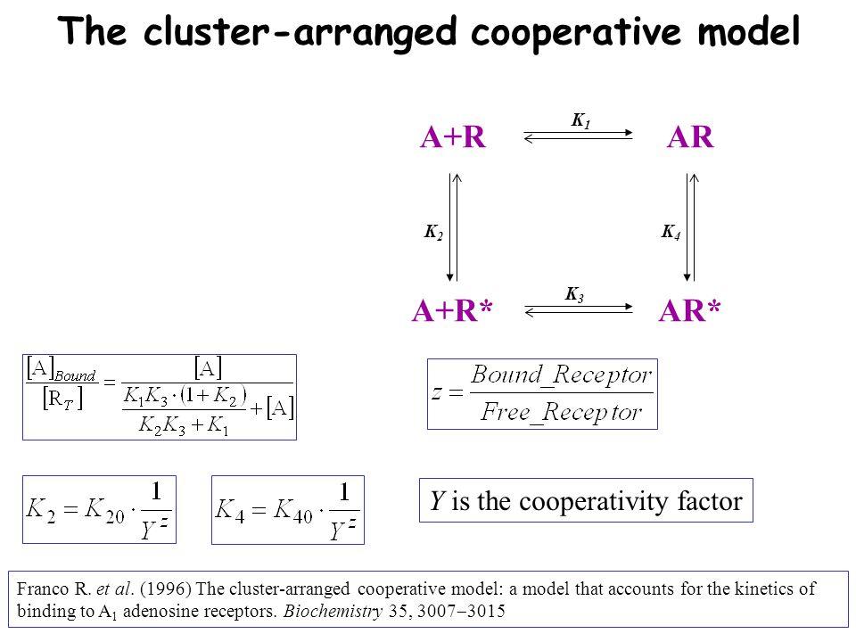 A+R A+R* AR AR* K2K2 K1K1 K4K4 K3K3 The cluster-arranged cooperative model Franco R.