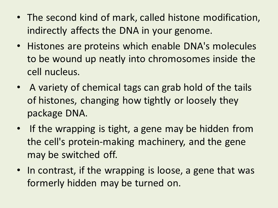 So who would make a good model for epigenetics? How about identical twins?