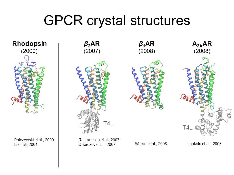 GPCR crystal structures Rhodopsin (2000) β 1 AR (2008) A 2A AR (2008) β 2 AR (2007) T4L Rasmussen et al., 2007 Cherezov et al., 2007 Palczewski et al., 2000 Li et al., 2004 Jaakola et al., 2008Warne et al., 2008