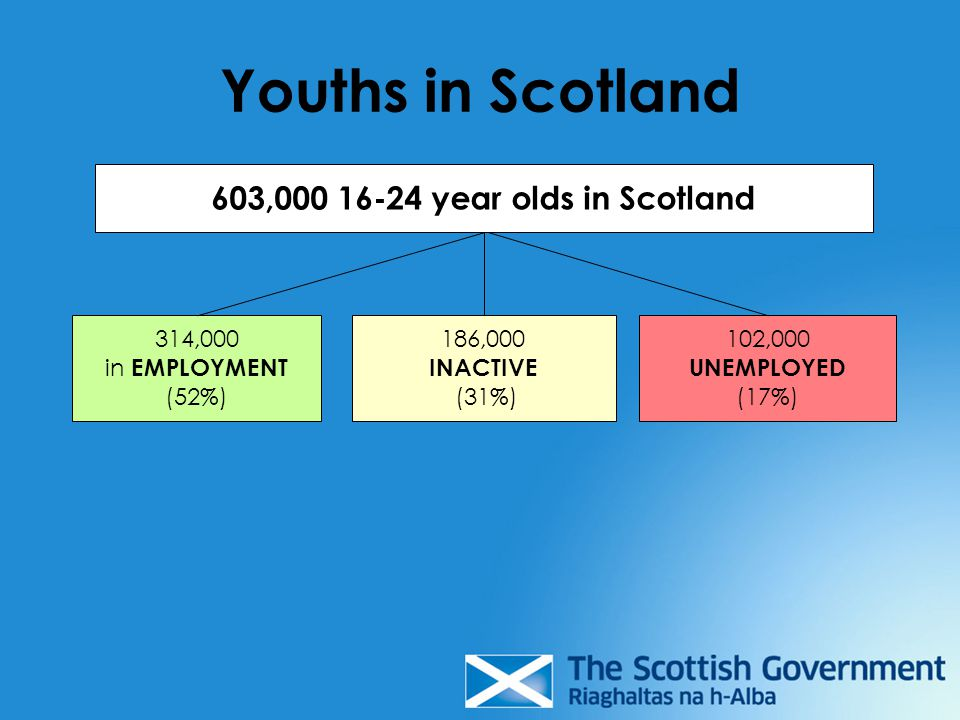 Youths in Scotland 603,000 16-24 year olds in Scotland 314,000 in EMPLOYMENT (52%) 186,000 INACTIVE (31%) 102,000 UNEMPLOYED (17%)