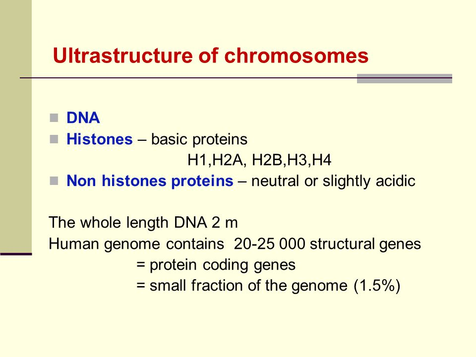 DNA Histones – basic proteins H1,H2A, H2B,H3,H4 Non histones proteins – neutral or slightly acidic The whole length DNA 2 m Human genome contains 20-2