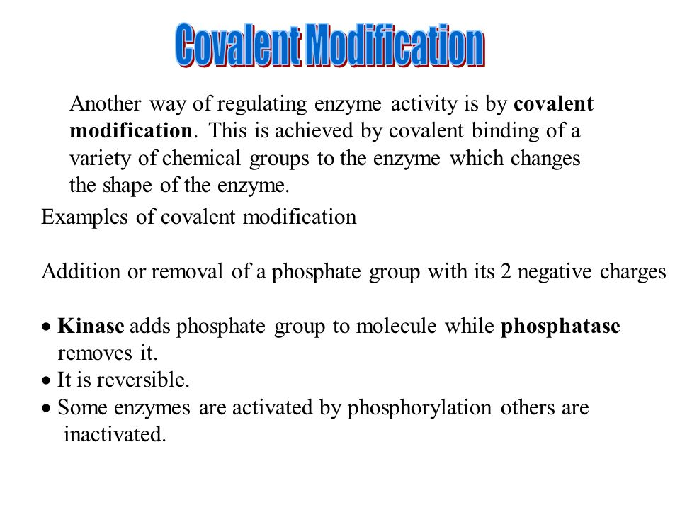 Another way of regulating enzyme activity is by covalent modification.
