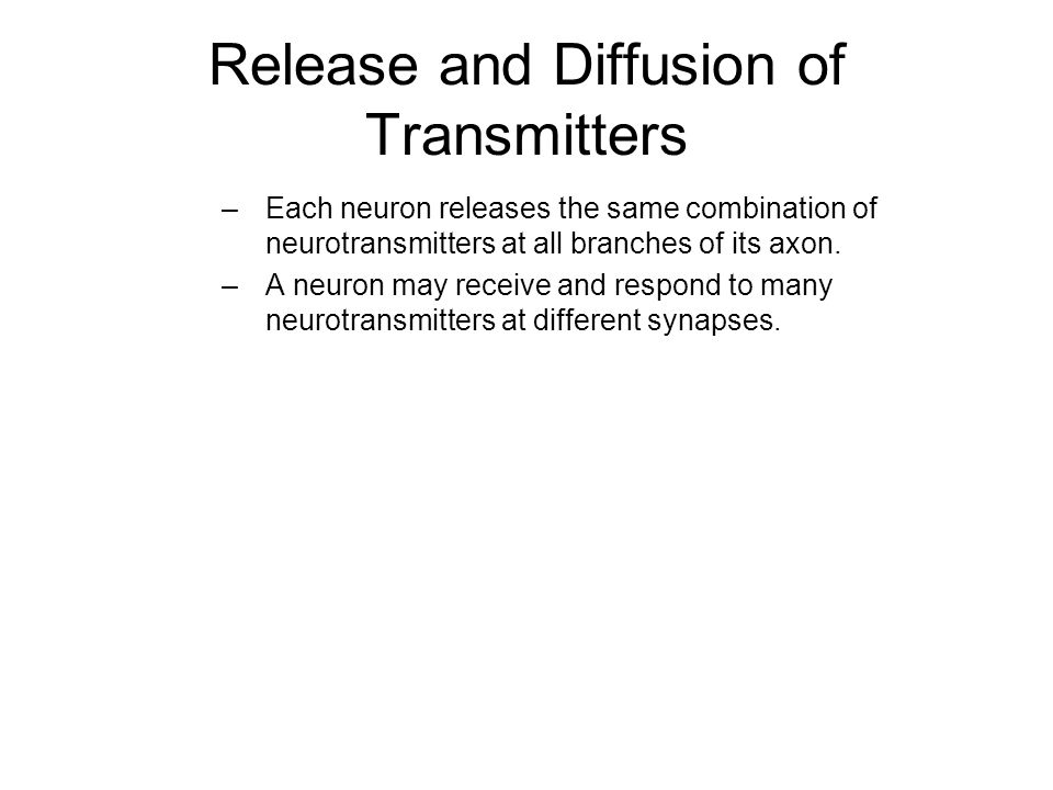 Release and Diffusion of Transmitters –Each neuron releases the same combination of neurotransmitters at all branches of its axon.