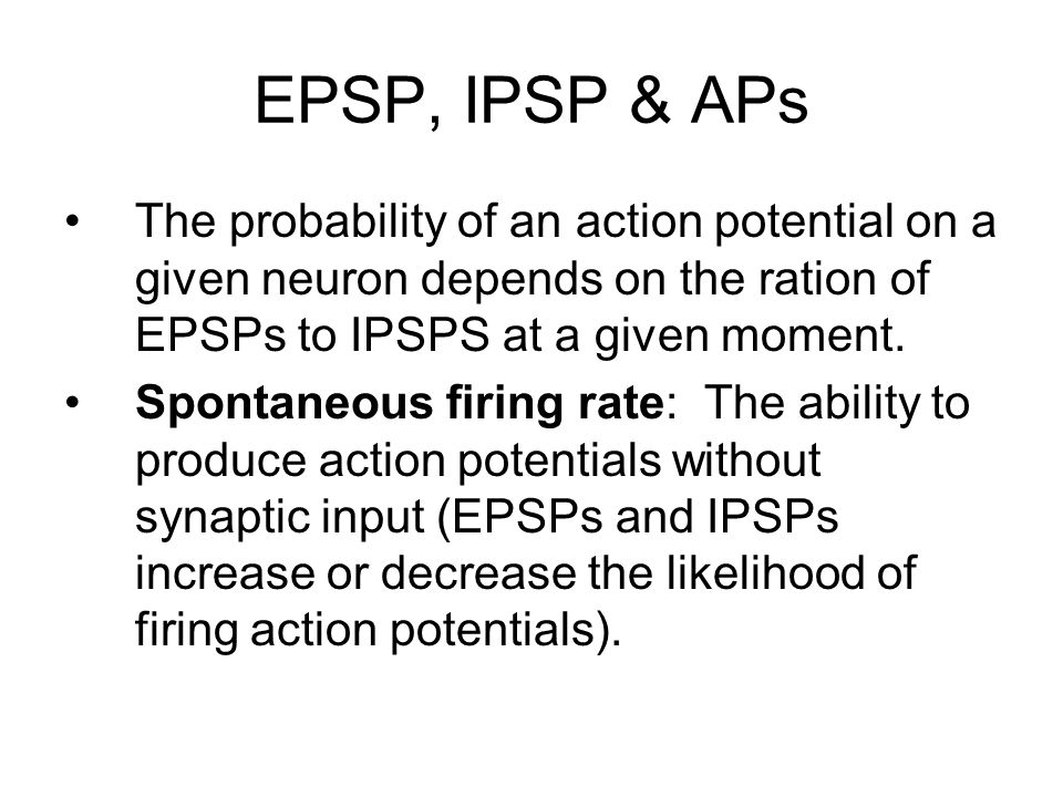EPSP, IPSP & APs The probability of an action potential on a given neuron depends on the ration of EPSPs to IPSPS at a given moment.