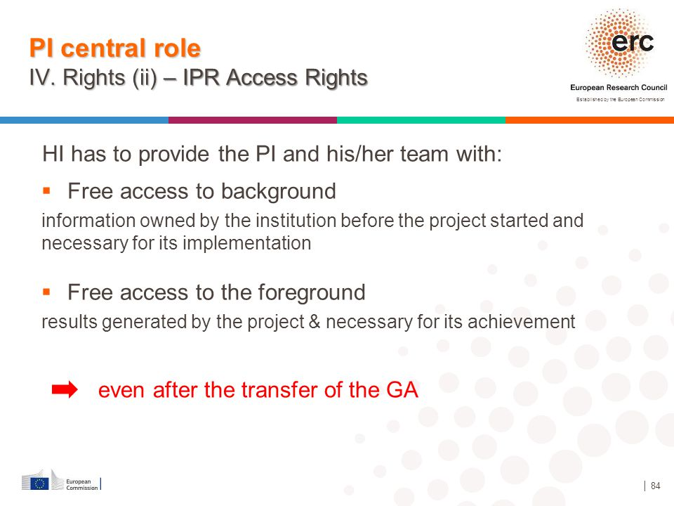 Established by the European Commission │ 84 PI central role IV. Rights (ii) – IPR Access Rights HI has to provide the PI and his/her team with:  Free