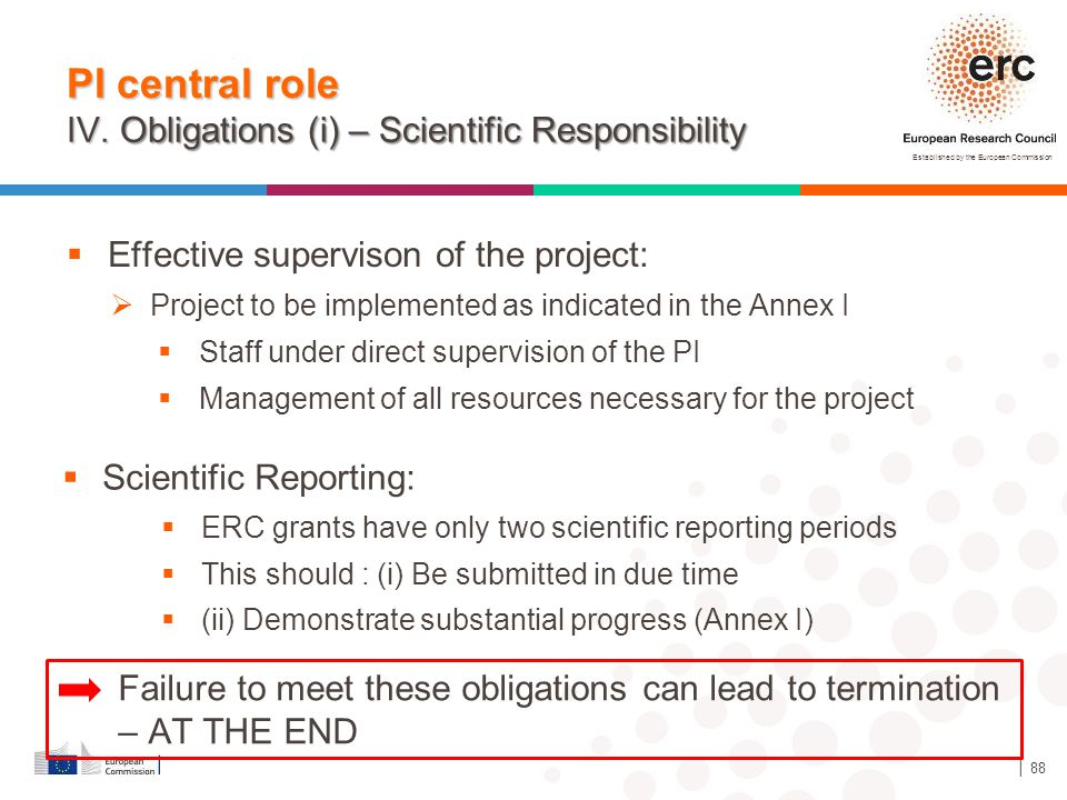 Established by the European Commission │ 88  Effective supervison of the project: PI central role IV. Obligations (i) – Scientific Responsibility  S