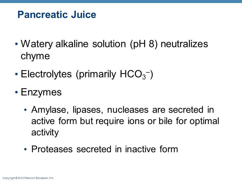 Copyright © 2010 Pearson Education, Inc. Pancreatic Juice Watery alkaline solution (pH 8) neutralizes chyme Electrolytes (primarily HCO 3 – ) Enzymes