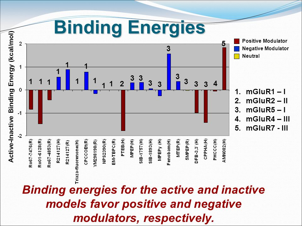 Binding Energies Positive Modulator Negative Modulator Neutral 1.mGluR1 – I 2.mGluR2 – II 3.mGluR5 – I 4.mGluR4 – III 5.mGluR7 - III Binding energies for the active and inactive models favor positive and negative modulators, respectively.