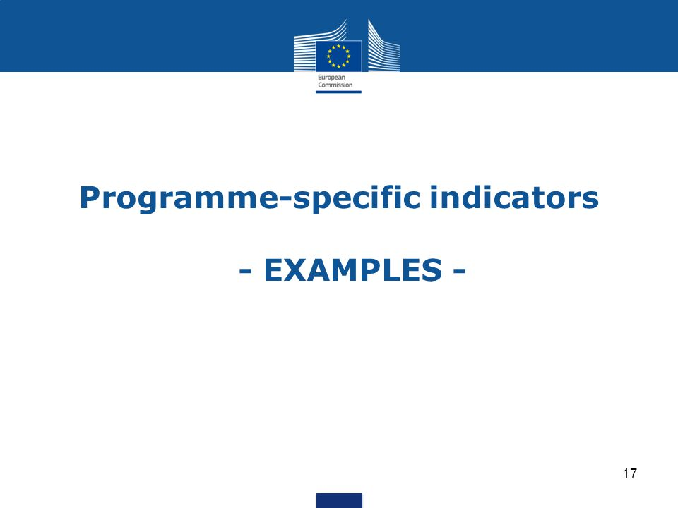 Programme-specific indicators - EXAMPLES - 17
