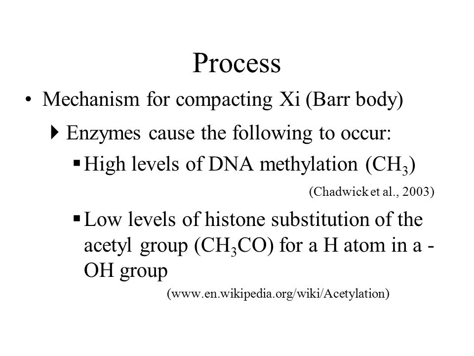Process Mechanism for compacting Xi (Barr body)  Enzymes cause the following to occur:  High levels of DNA methylation (CH 3 ) (Chadwick et al., 2003)  Low levels of histone substitution of the acetyl group (CH 3 CO) for a H atom in a - OH group (www.en.wikipedia.org/wiki/Acetylation)