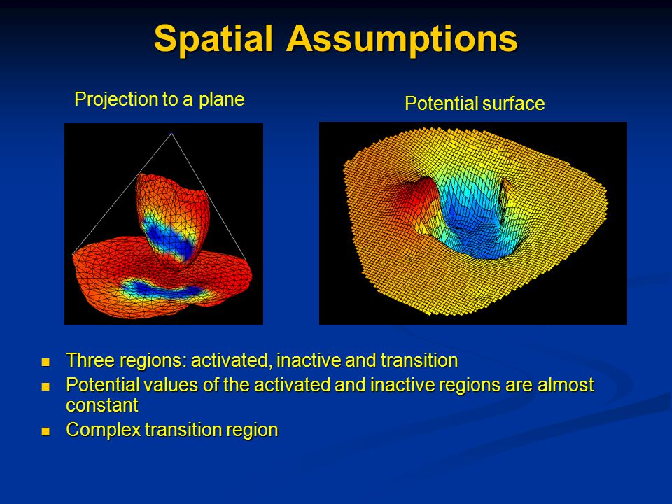 Spatial Assumptions Three regions: activated, inactive and transition Three regions: activated, inactive and transition Potential values of the activated and inactive regions are almost constant Potential values of the activated and inactive regions are almost constant Complex transition region Complex transition region Potential surface Projection to a plane