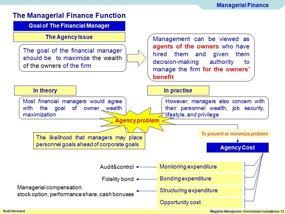 Managerial Finance Magister Manajemen-Universitas Gunadarma-12 Budi Hermana The Managerial Finance Function Goal of The Financial Manager The Agency I