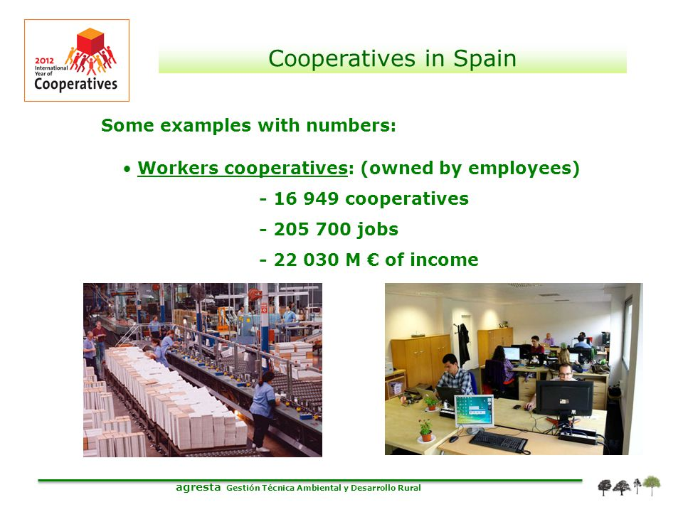 agresta Gestión Técnica Ambiental y Desarrollo Rural Cooperatives in Spain Some examples with numbers: Workers cooperatives: (owned by employees) - 16