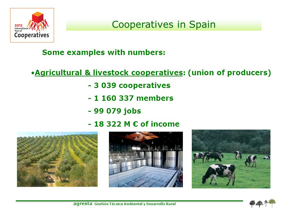 agresta Gestión Técnica Ambiental y Desarrollo Rural Cooperatives in Spain Some examples with numbers: Agricultural & livestock cooperatives: (union o