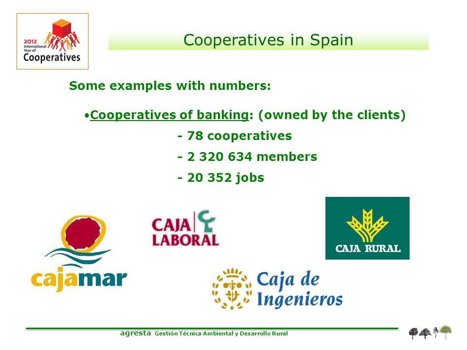 agresta Gestión Técnica Ambiental y Desarrollo Rural Cooperatives in Spain Some examples with numbers: Cooperatives of banking: (owned by the clients)