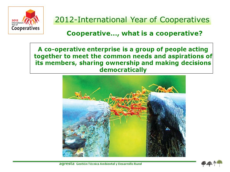 agresta Gestión Técnica Ambiental y Desarrollo Rural 2012-International Year of Cooperatives Cooperative…, what is a cooperative? A co-operative enter