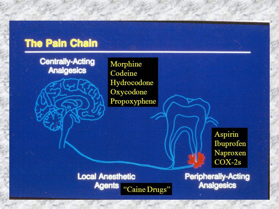 Morphine Codeine Hydrocodone Oxycodone Propoxyphene Caine Drugs Aspirin Ibuprofen Naproxen COX-2s
