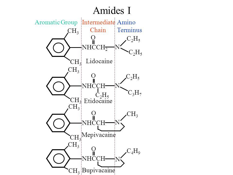 Amides I NHCCH 2 O Lidocaine Aromatic GroupIntermediate Chain Amino Terminus CH 3 N C2H5C2H5 C2H5C2H5 NHCCH O C2H5C2H5 N C2H5C2H5 C3H7C3H7 Etidocaine NHCCH N CH 3 Mepivacaine O NHCCH O N C4H9C4H9 Bupivacaine