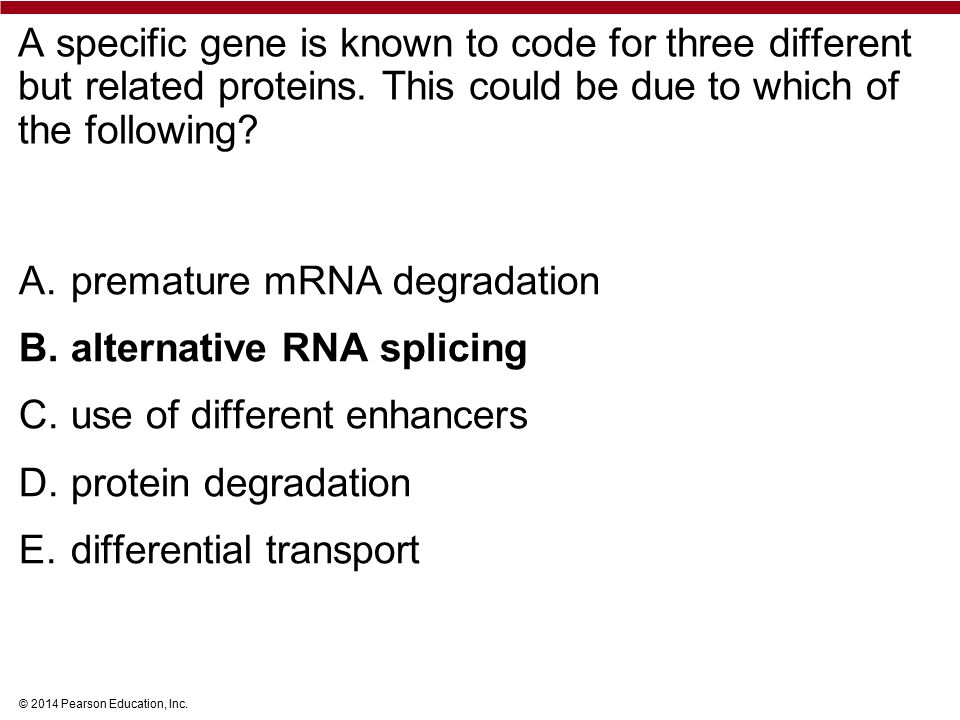 © 2014 Pearson Education, Inc. A specific gene is known to code for three different but related proteins. This could be due to which of the following?