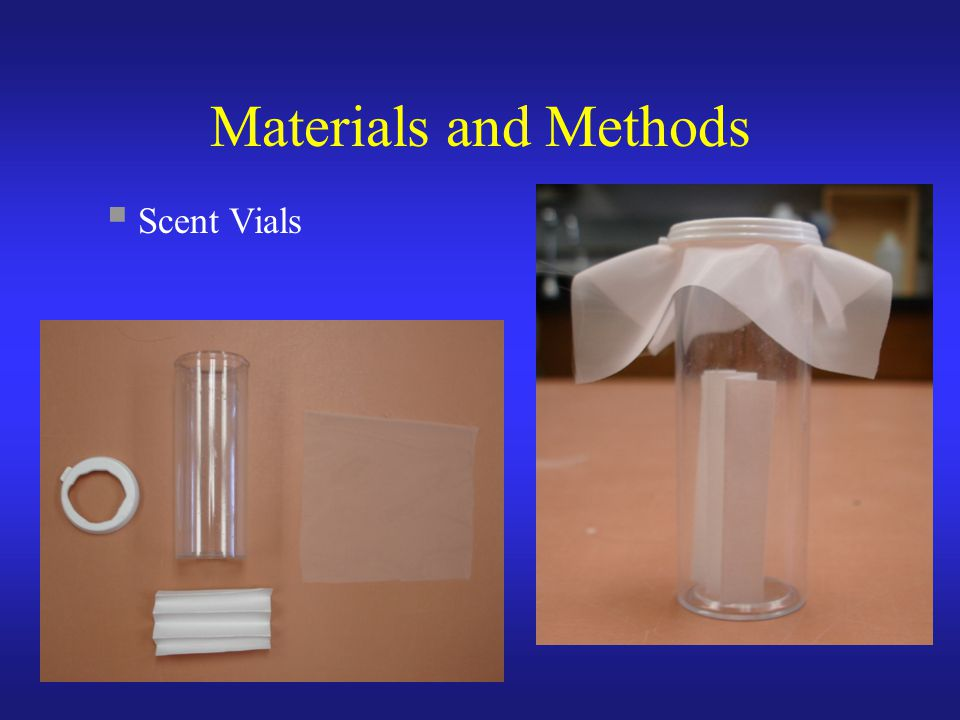 Materials and Methods  Scent Vials