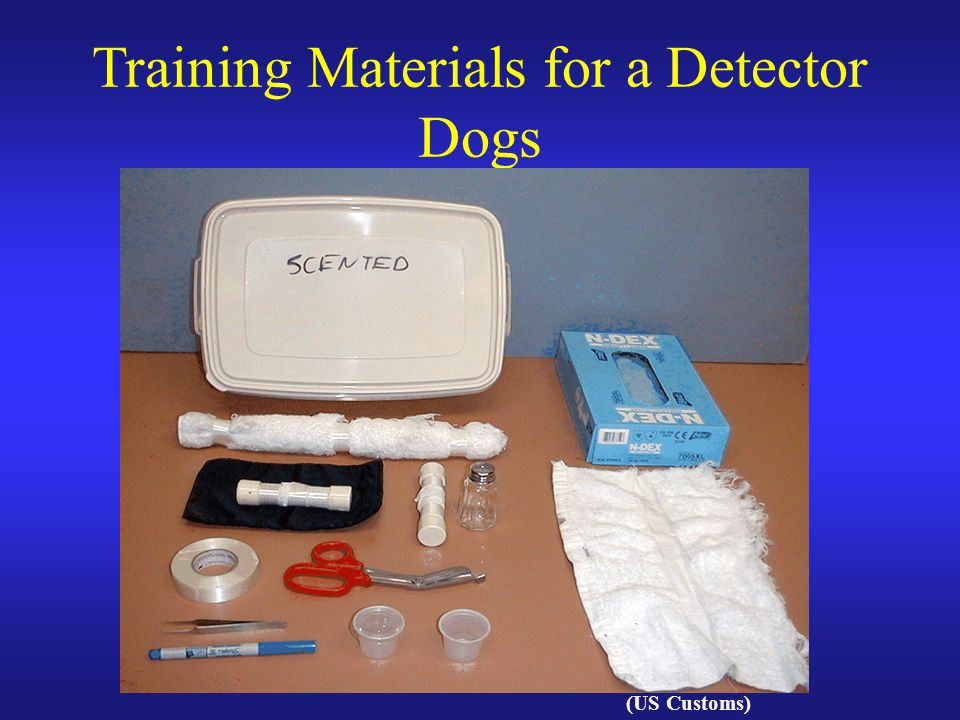 Training Materials for a Detector Dogs (US Customs)