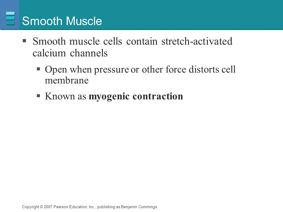 Copyright © 2007 Pearson Education, Inc., publishing as Benjamin Cummings Smooth Muscle  Smooth muscle cells contain stretch-activated calcium channels  Open when pressure or other force distorts cell membrane  Known as myogenic contraction