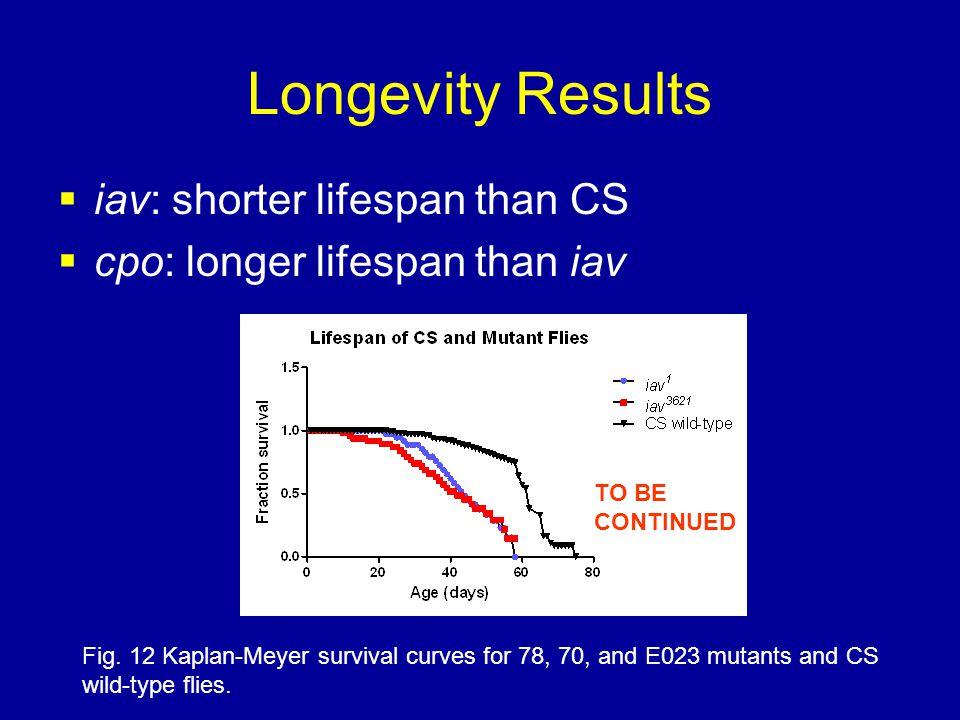 Longevity Results  iav: shorter lifespan than CS  cpo: longer lifespan than iav Fig.