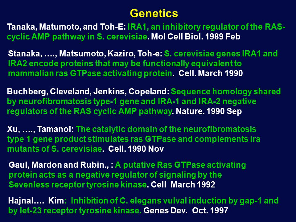 Genetics Gaul, Mardon and Rubin., : A putative Ras GTPase activating protein acts as a negative regulator of signaling by the Sevenless receptor tyrosine kinase.