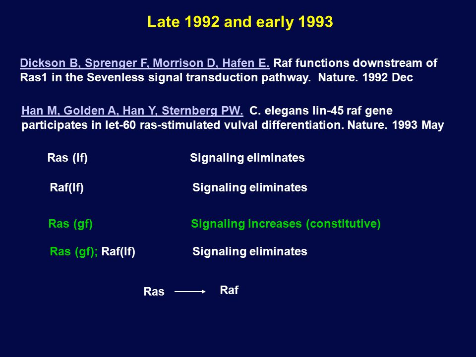 Late 1992 and early 1993 Han M, Golden A, Han Y, Sternberg PW.Han M, Golden A, Han Y, Sternberg PW. C. elegans lin-45 raf gene participates in let-60