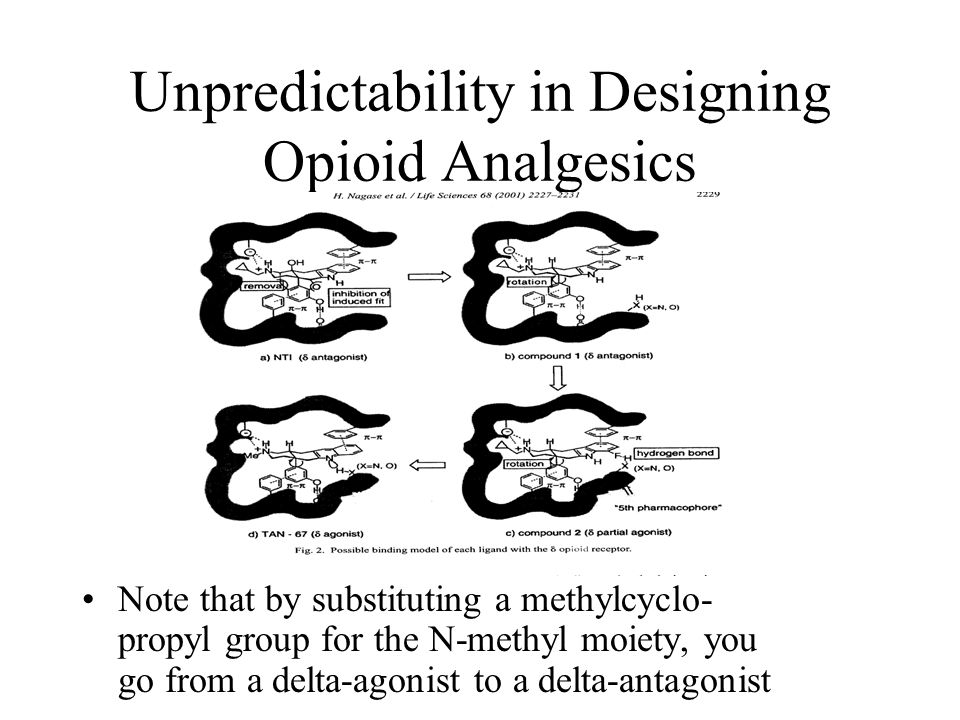 Unpredictability in Designing Opioid Analgesics Note that by substituting a methylcyclo- propyl group for the N-methyl moiety, you go from a delta-agonist to a delta-antagonist