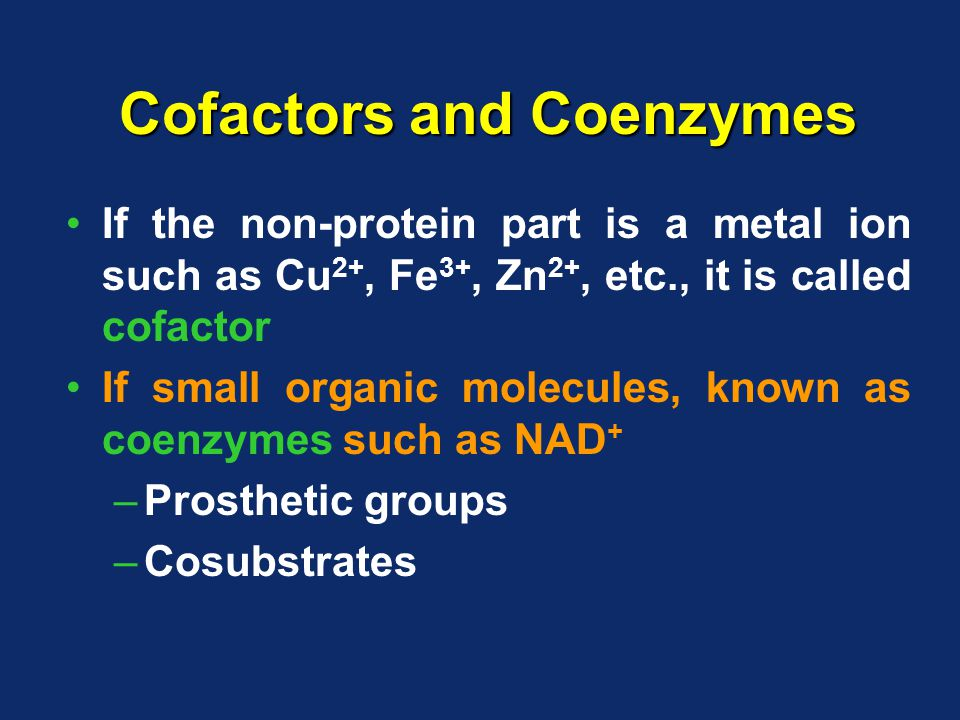 Cofactors and Coenzymes If the non-protein part is a metal ion such as Cu 2+, Fe 3+, Zn 2+, etc., it is called cofactor If small organic molecules, known as coenzymes such as NAD + –Prosthetic groups –Cosubstrates