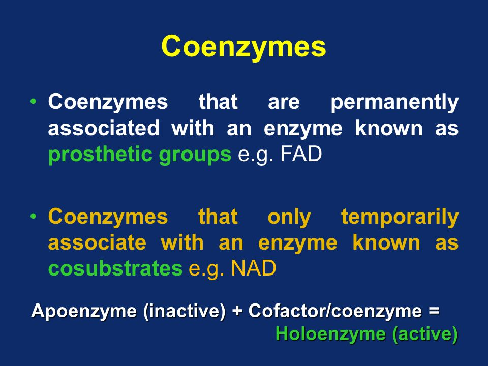 Coenzymes Coenzymes that are permanently associated with an enzyme known as prosthetic groups e.g.