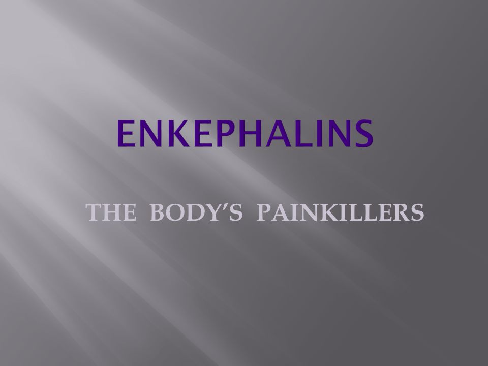 THE BODY'S PAINKILLERS