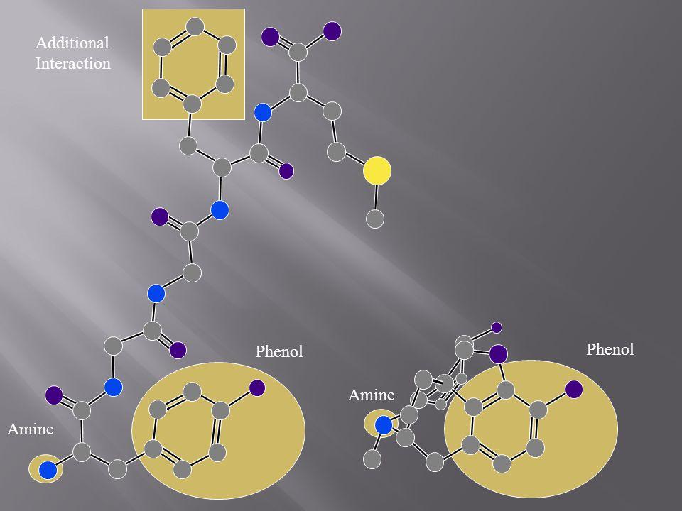 Additional Interaction Amine Phenol