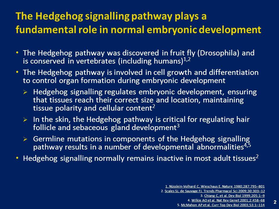 13 References The Hedgehog signalling pathway Bale AE, Yu KPBale AE, Yu KP.