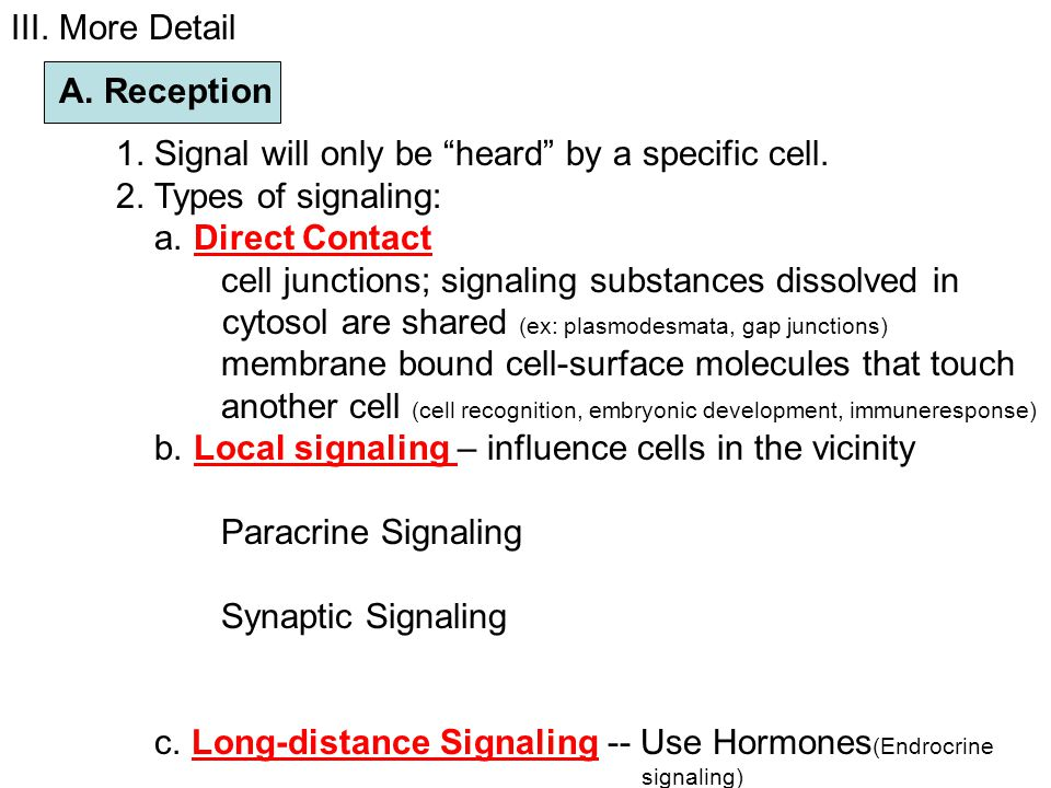 III.More Detail A. Reception 1. Signal will only be heard by a specific cell.