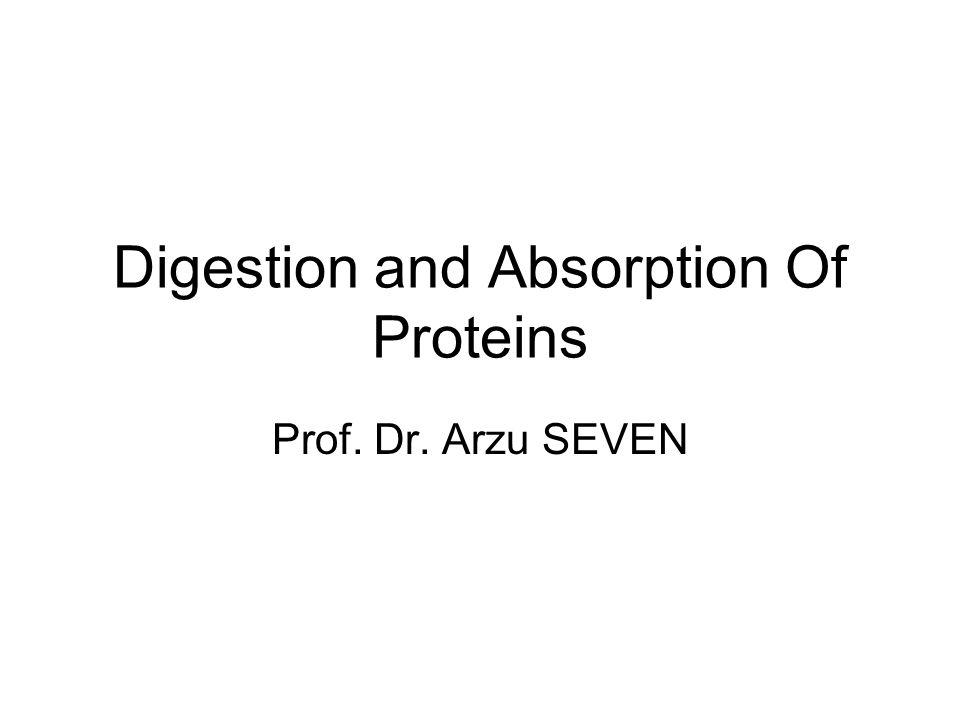 Digestion and Absorption Of Proteins Prof. Dr. Arzu SEVEN