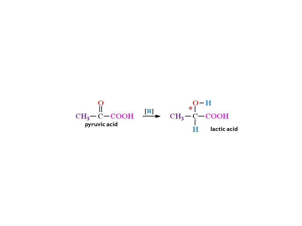 * pyruvic acid lactic acid