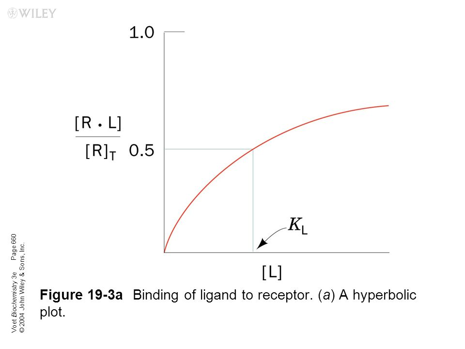Voet Biochemistry 3e © 2004 John Wiley & Sons, Inc. Figure 19-3aBinding of ligand to receptor. (a) A hyperbolic plot. Page 660