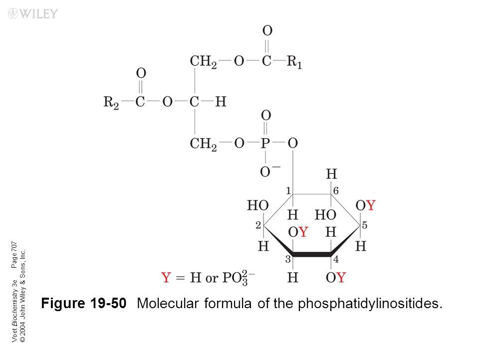 Voet Biochemistry 3e © 2004 John Wiley & Sons, Inc. Figure 19-50Molecular formula of the phosphatidylinositides. Page 707