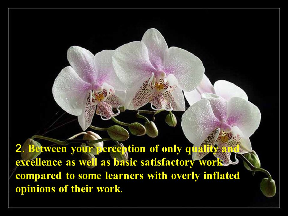 2. Between your perception of only quality and excellence as well as basic satisfactory work compared to some learners with overly inflated opinions o