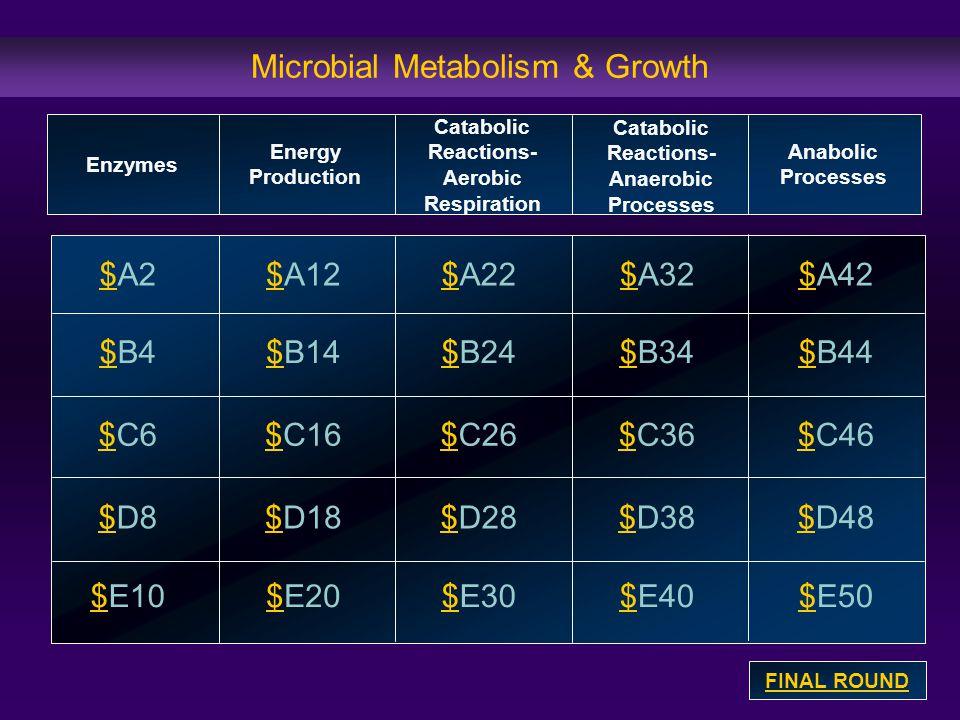 Microbial Metabolism & Growth $$A2 $$B4 $$C6 $$D8 $$E10 $$A12$$A32$$A22$$A42 $$B14$B24$$B34$$B44 $$C16$$C26$$C36$$C46 $$D18$$D28$$D38$$D48 $$E20$$E30$